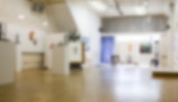 Tom Robinson Gallery