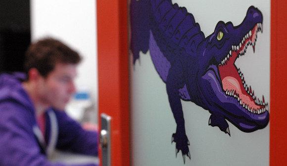 Purple gator2