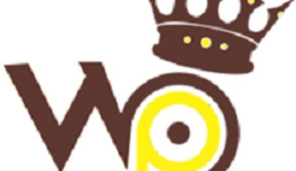 Logo head 2