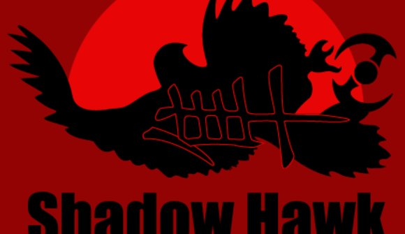Shadow Hawk School of Ninjitsu