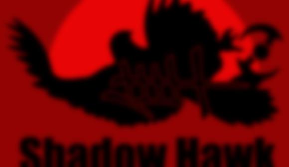 Shadow Hawk School of Ninjitsu