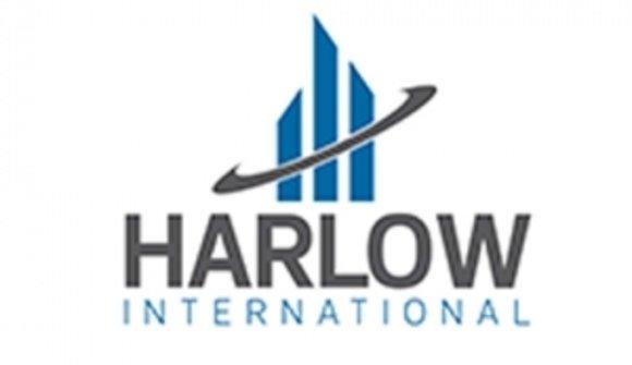 Harlow copy
