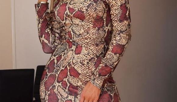 Snake print long sleeve bodycon midi dress